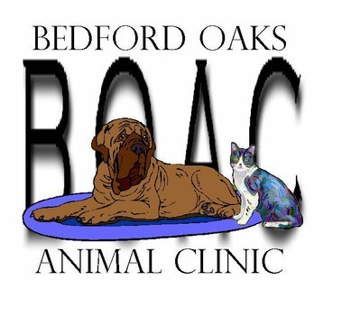 Bedford Oaks Animal Clinic - Bedford, TX