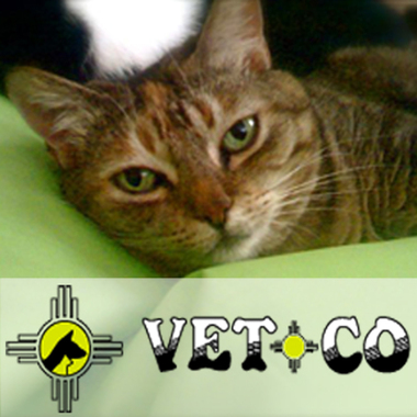 Vet-Co - Albuquerque, NM