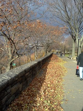 Fort Tryon Park - New York, NY