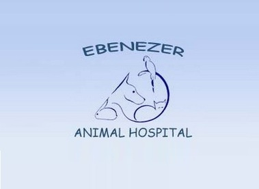 Ebenezer Animal Hospital - Rock Hill, SC