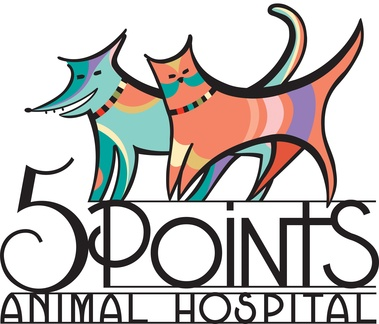 5 Points Animal Hospital - Nashville, TN