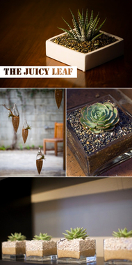 The Juicy Leaf - Venice, CA