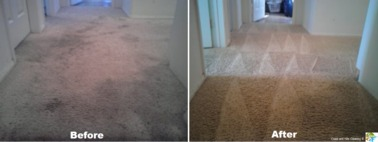 Coast & Hills Cleaning - Compton, CA