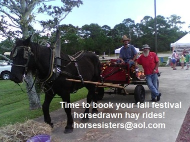 Horse Sisters - Titusville, FL