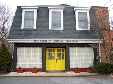 Lutherville Animal Hospital - Lutherville Timonium, MD