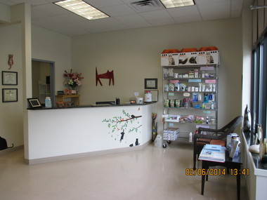The Cat Hospital of Durham And Chapel Hill - Durham, NC