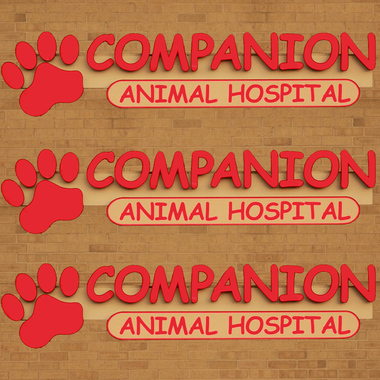 Companion Animal Hospital - Madison, WI