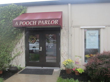Bath biscuits more pet salon in lancaster pa 17601 for 717 salon lancaster pa