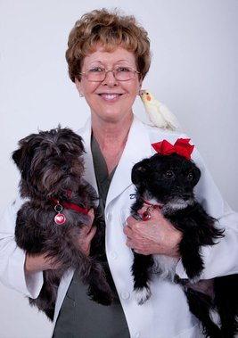 Animal Hospital & Bird Clinic - Fresno, CA