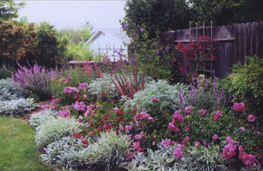 Best Tex Gardens and Landscaping - Austin, TX