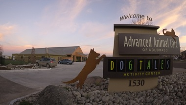 Advanced Animal Care Of Colorado - Fort Collins, CO