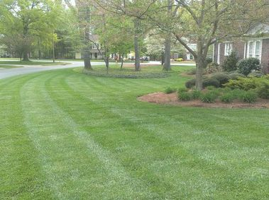Realiscape Landscaping - Pineville, NC