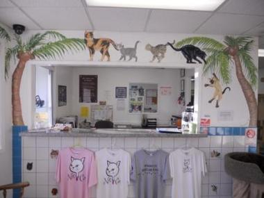 NATIONAL CAT PROTECTION SOCIETY - Newport Beach, CA