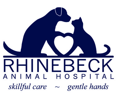 Rhinebeck Animal Hospital - Rhinebeck, NY